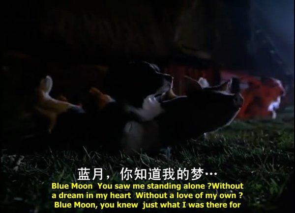 《宝贝小猪罗》剧照-3