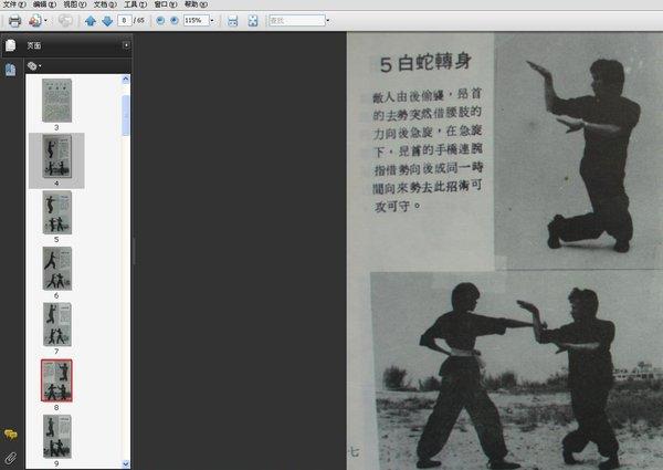 在少林五形拳中属于练气的功夫,蛇拳外在柔功的要点:松柔,缓慢,灵活