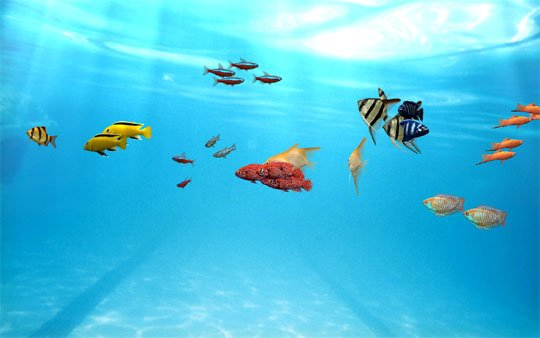 鱼缸安装图解 步骤