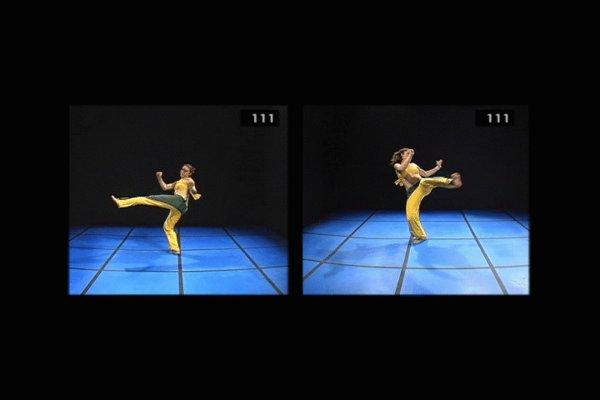 《人体韵律-格斗极品动画素材-合集(序列图)》(principles of motion