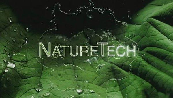 大自然启示录——强烈推荐给机械控们 - 张果老 - 圣菲小学 张子红博客