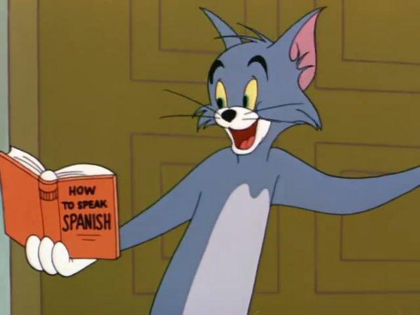 《猫和老鼠》(tom and jerry)[52norm]50周年收藏版/国语/粤语/英语[h