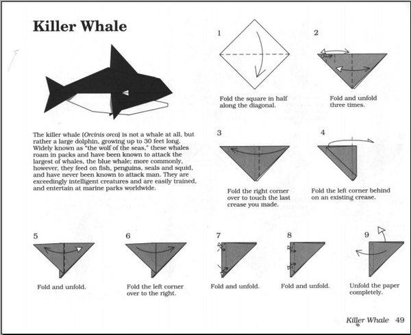 《海洋生物折纸》(origami sea life)扫描版[pdf]