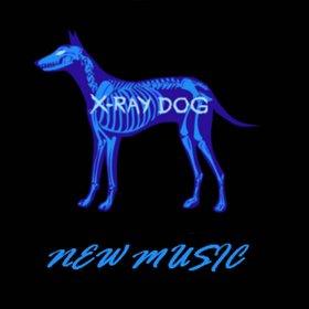 x ray dog ravenous_Ravenous - X-Ray Dog,Ravenous在线试听,纯音乐,MP3下载 - 听蛙纯音乐网